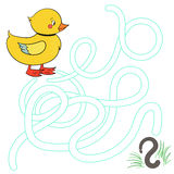 Labyrinth maze find a way duck Royalty Free Stock Photo