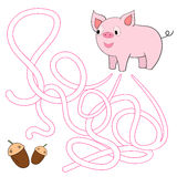 Labyrinth maze find a way pig Royalty Free Stock Images