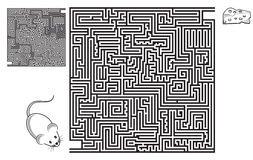 Labyrinth, maze, intricacy, puzzle, square, game, sketch, high level, coloring page, black, activity, fun, mouse, cheese, solution Stock Images