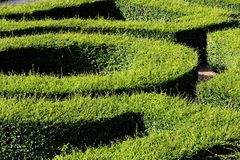 Labyrinth maze Royalty Free Stock Image