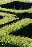 Labyrinth maze Royalty Free Stock Photos