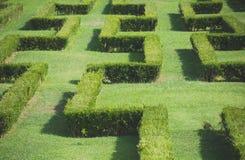 Labyrinth. Stock Photography