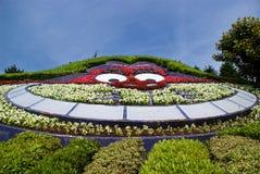 Labyrinth von Alice im Märchenland lizenzfreie stockfotografie