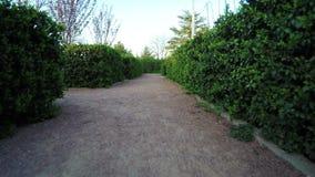 Labyrinth von Büschen