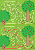 Labyrinthe d'écureuil Images libres de droits