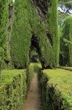 Labyrinthe dans l'Alcazar royal Images stock