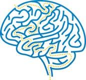 Labyrinthe de cerveau Photographie stock libre de droits