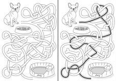 Labyrinthe de chien Photos libres de droits