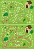 Labyrinthe de chien Images stock