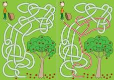 Labyrinthe de cueillette d'Apple Illustration Stock