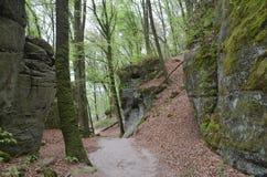 Labyrinthe de forêt et de roches Image libre de droits