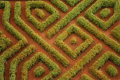 Labyrinthe de jardin Photos stock