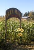 Labyrinthe de maïs Images stock