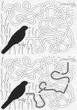 Labyrinthe de merle Photos libres de droits