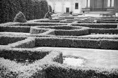 Labyrinthe des plantes vertes dans le jardin de Prague, République Tchèque Image libre de droits