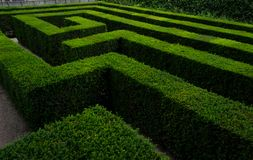 Labyrinthe et labyrinthe dans le jardin de palais de Schonbrunn photos libres de droits