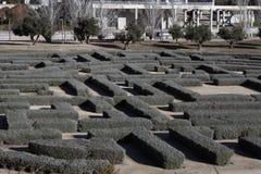 Labyrinthe naturel en parc photographie stock libre de droits