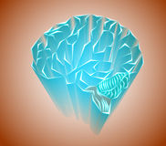 Labyrinths of the human brain Stock Images