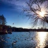 Lac à Bucarest Image libre de droits