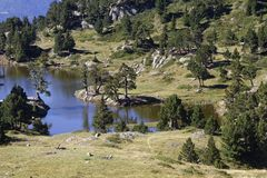 Lac Achard in Chamrousse. Lac Achard, in Chamrousse mountain range Royalty Free Stock Photo