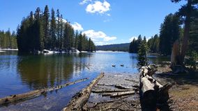 Lac alpin avec le bois de construction dans l'avant image stock