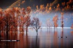 Lac ardent Images libres de droits