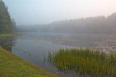 Lac argenté en début de la matinée images stock