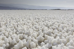 Lac Asal Djibouti. Lac Asal salt crystals around the lake, Djibouti, East Africa royalty free stock photos