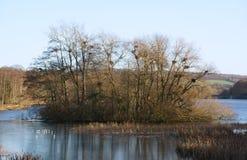 Lac au parc de sculpture en Yorkshire Photographie stock