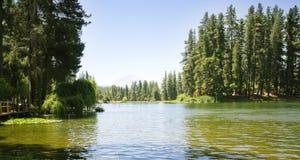 Lac aux montagnes chiliennes Photos stock