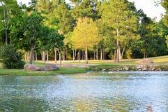 Lac avec des arbres Photo libre de droits