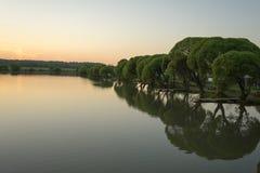 Lac avec des arbres dans le coucher du soleil de soirée Photo stock