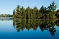 Lac avec des arbres de pin Photographie stock libre de droits