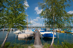 Lac avec des bateaux et des bouleaux image libre de droits