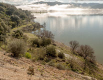 Lac avec des débris de brouillard photos libres de droits