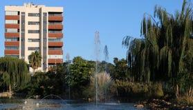 Lac avec des fontaines et des saules image stock
