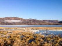 Lac avec la brume pendant le matin Photo libre de droits