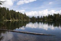 Lac avec la forêt Image libre de droits