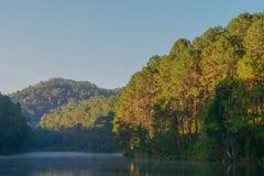 Lac avec le myst Photographie stock libre de droits