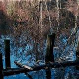 Lac avec refléter Images stock