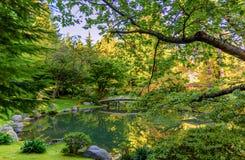 Lac avec un pont en bois fleuri, des arbres et un toit de véranda dans a images stock