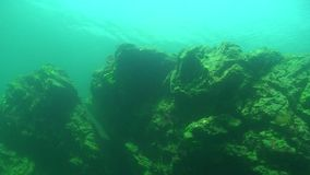 Lac Baikal sous-marin clips vidéos