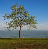 Lac Balaton photographie stock libre de droits