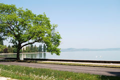 Lac Balaton, Hongrie Photo stock
