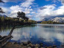 Lac Beauvert. In Jasper, Canada Royalty Free Stock Photo