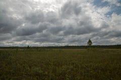 Lac blanc, Estonie Septembre, lumière d'après-midi Photo stock