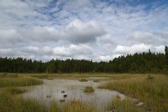 Lac blanc, Estonie Septembre, lumière d'après-midi Photographie stock