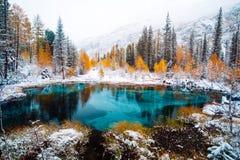 Lac bleu fantastique de geyser dans la forêt Altai, Russie d'automne photographie stock