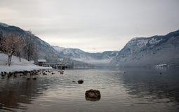 Lac Bohinj Photos libres de droits
