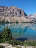 Lac bow chez Jasper National Park Image libre de droits